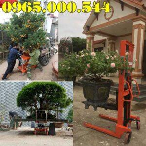 Ban Xe Nang Chau Cay Kieng Tai Binh Phuoc