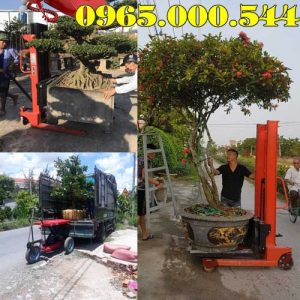 Dia Chi Ban Xe Nang Cay Canh Tai Thai Binh