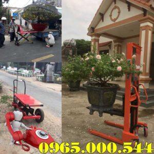 Dia Chi Ban Xe Nang Chau Cay Canh O Bac Giang